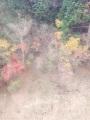 "Blog update: ""Autumn."""